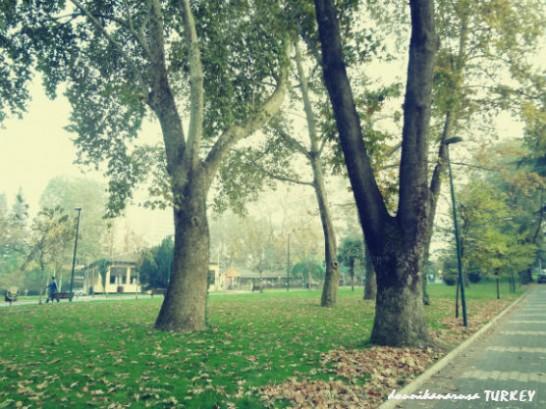 緑あふれる美しい街ブルサ